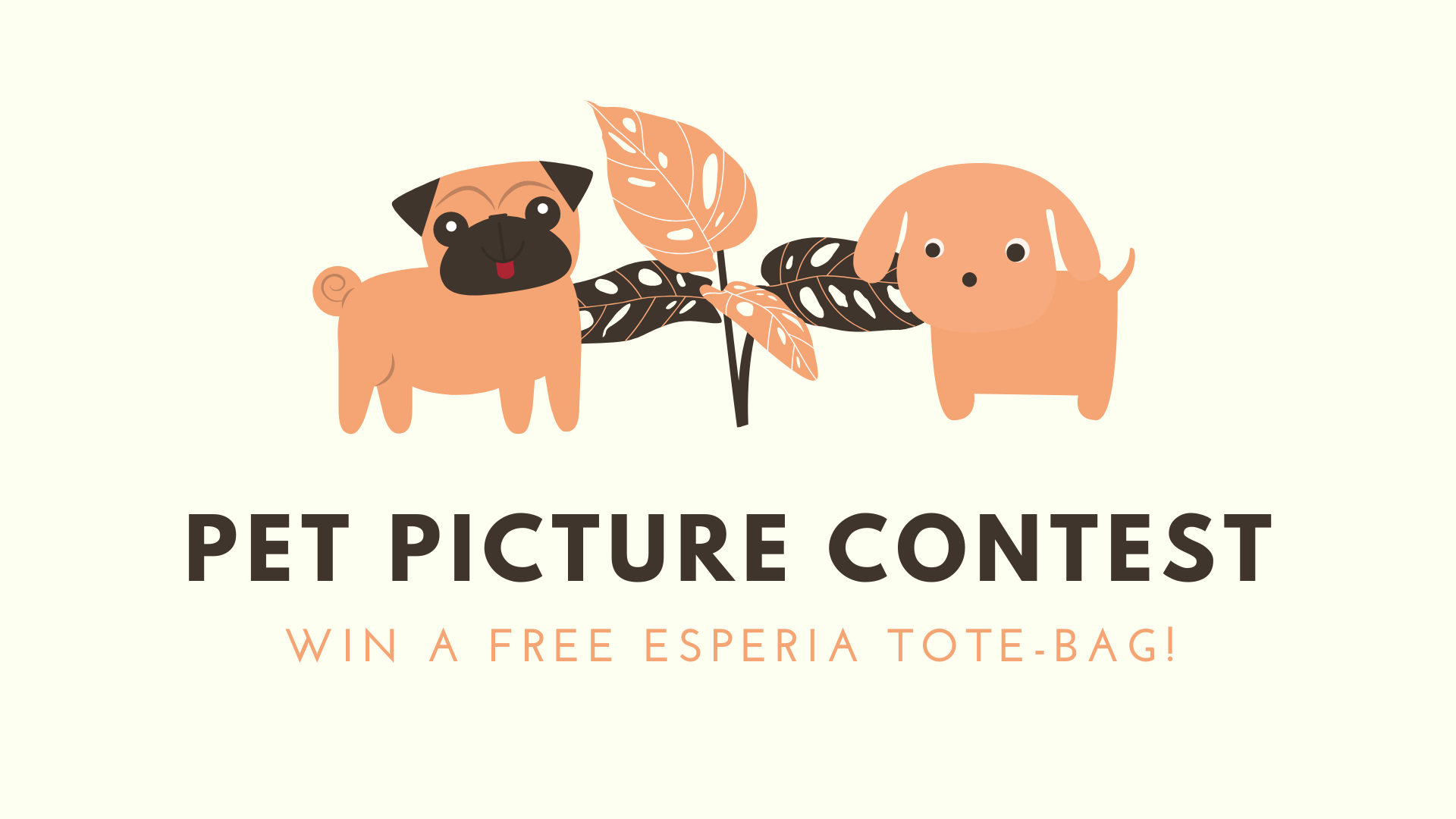 Pet picture contest!